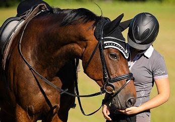 Individuelle Pakete auf Sie & Ihr Pferd abgestimmt